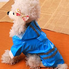 QINF Fashion Safe Reflect Light PU Rain Coat Clothes for Dog(Assorted ColorsandSizes) -- For more information, visit image link. (This is an affiliate link and I receive a commission for the sales) Dog Itching, Dog Training Pads, Dog Dental Care, Dog Food Storage, Dog Shower, Dog Shedding, Dog Diapers, Dog Eyes, Dog Chew Toys