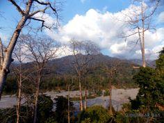 Raimatang Dooars at Kalchini, Alipurduar