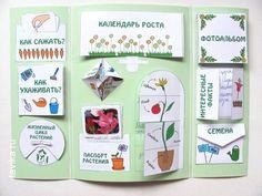Лэпбук для юных садоводов - Игры с детьми - Babyblog.ru