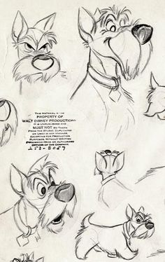 """Living Lines Library: Lady and the Tramp - Character Design > Model Sheet. - Model Sheet…""""> Living Lines Library: Lady and the Tramp – Character Design > Model She - Drawing Cartoon Characters, Cartoon Sketches, Disney Sketches, Animal Sketches, Disney Drawings, Animal Drawings, Cartoon Art, Art Drawings, Drawing Faces"""