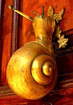Snail Door Knocker   @ TheDailyBasic #theconcessionrealestate #doorknocker #knockknock