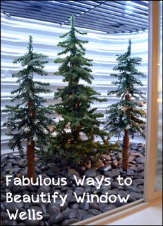 •❈• Fabulous Ways to Beautify Your Window Wells