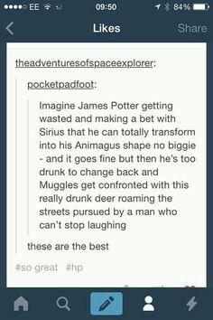 Imagine James Potter drunk and high magic. Hogwarts, Slytherin, Harry Potter Jokes, Harry Potter Fandom, Harry Potter Imagines, James Potter, Dr Who, No Muggles, Plus Tv