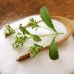 Diabetes Stevia: propriedades medicinais e contra-indicações