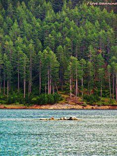 Metsovou lake, Epirus Hellas