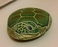 Tartaruga marina by Daniela Zambuto