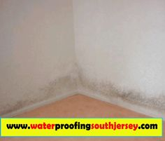 Mold can compel a specific to change a couch and even a carpeting, but it can be worse when health issues kick in. Mold growth can be a major problem. This is because it can result in residential property damages besides increasing the threat of health issues to everyone who stays there. Browse this site http://waterproofingsouthjersey.com/new-jersey-mold-remediation/ for more information on Mold Remediation NJ.