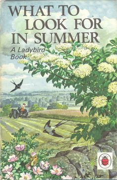 "Cover of ""What to Look for in Summer"" (from vintage English ""Ladybird"" storybooks) Vintage Book Covers, Vintage Children's Books, Antique Books, All Nature, Walking In Nature, Ladybird Books, Beautiful Book Covers, Children's Book Illustration, Book Illustrations"