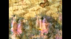 Eco dyeing - colors - Ewa Latała