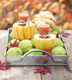 Gourds and Hedgeballs make for beautiful Fall decor