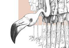 Flamingo Boys: fotografische print van onze originele illustratie van een groep flamingos in schooluniform.  De illustratie is geprint op professioneel fotopapier (200 gr/m2 Fuji Digital Professional DP II Lustre). Het Fuji fotopapier is gedurende 75 jaar kleurecht. Beschikbaar in 3 formaten en wordt geleverd zonder lijst.  De illustratie  Flamingo Boys is onderdeel van de serie Weird & Wonderful met bizarre, bijzondere, surrealistische pentekeningen. Dieren en mensen in wonderlijke ...