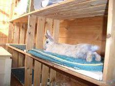 Bildergebnis für buddelkiste für kaninchen