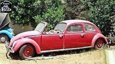 Franken-wagen or VW rendition of Hollywood movie star limousine? Weird Cars, Cool Cars, Carros Vw, Combi Wv, Vw Pickup, Kdf Wagen, Automobile, Vw Vintage, Vintage Trucks