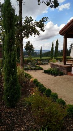 Alloro Vineyard - Sherwood, OR, United States. For more information about this winery and our extensive guide to the best USA wineries as well as information about wine, visit: http://www.allaboutcuisines.com/wine #Wineries Willamette Valley
