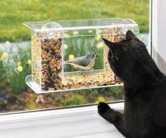 One Way Mirror Bird Feeder