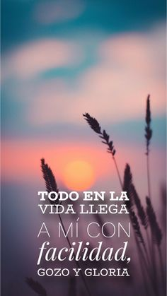 Access Bars, Spanish Inspirational Quotes, Access Consciousness, Making A Vision Board, Artist Quotes, Magic Words, Life Words, Positive Life, Good Thoughts