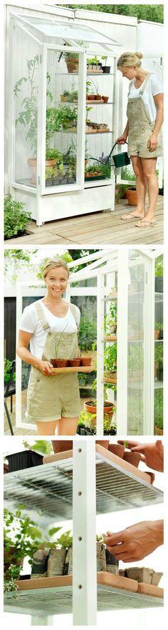 Amazing mini-greenhouse, my manlief weet dit net nog nie maar op ons deck sal ek graag so een wil he :)