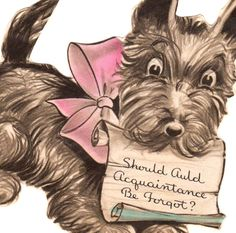 SCOTTIE DOG CARDS | Scotty Dog 1955 Greeting Card Scottie Dog with Pink Ribbon Hallmark ...