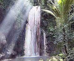 Diamond Waterfall  Botanical Gardens  St. Lucia