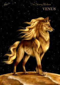 The Starry Wolves - Venus by NZwolf.deviantart.com on @deviantART