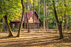 Cottage in Forest by Jozef (Saki) Sakalos Cottage, Cabin, House Styles, Nature, Home Decor, Naturaleza, Decoration Home, Room Decor, Cottages