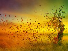 When is the first day of fall 2016? Get the autumnal equinox date and time. Plus, free autumn photos, folklore, and more!