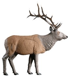 Beautiful NEW Rinehart Targets 225 Standing Elk Self Healing Archery Hunting Target Outdoor Sports from top store 3d Archery Targets, 3d Targets, Crossbow Targets, Crossbow Arrows, Crossbow Hunting, Archery Range, Archery Gear, Archery Hunting, Deer Archery Target