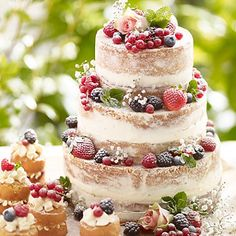 Tiered Summer Berries Cake - from Lakeland