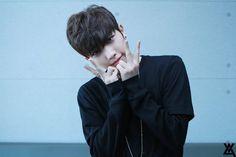 varsity kpop profile, varsity debut 2017, varsity music bank, varsity  music core, varsity inkigayo, varsity m countdown, varsity album, varsity kpop, varsity kpop members