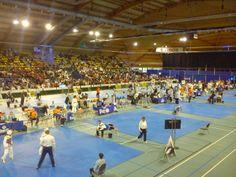 taekwondo greece group: 41th LOTTO DUTCH OPEN TAEKWONDO CHAMPIONSHIPS 2014...