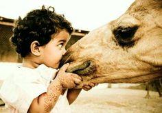 ...kissing a camel?? ;)