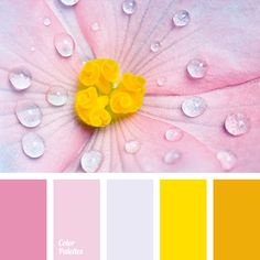 bright yellow, color match for renovation, color solution for home, Orange Color Palettes, pale pink, pale violet, pink, shades of pink, warm orange, warm shades, Yellow Color Palettes.