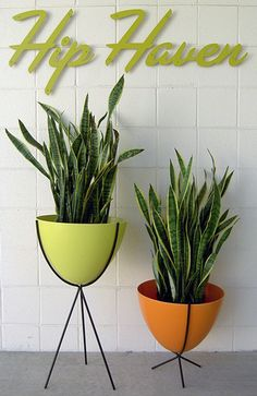 Hip Haven bullet planters -- nifty gifty holiday idea - Retro Renovation