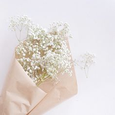 Baby Aesthetic White 70 New Ideas Cream Aesthetic, Flower Aesthetic, Aesthetic Photo, Aesthetic Pictures, Aesthetic Pastel Wallpaper, Aesthetic Backgrounds, Aesthetic Wallpapers, Photo Images, No Rain