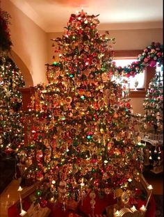 christmas tree decorated in multi colored lights | ... : Do you ...