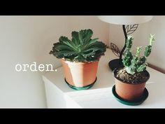 CÓMO SER ORDENADO SIEMPRE | Método Konmari - YouTube