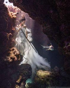 Underwater Swim With Sharks Photos - Benjamin Von Wong
