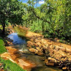 #southafrica #travelblog #travelblogger #traveladdict #travel #blogger #lakife.com #globetrotter #travelinspiration #traveltheworld #traveling #instatravel #johannesburg #joburg #river #nature #landscape #sun #ilovemyfollowers