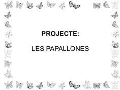 Presentacio papallones fitxetes