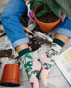 "bd18a0d657bdd Many Mornings Mismatched Socks on Instagram: ""TransPLANT 🌿 #manymornings  #goodmornings #new #socks #sox #socken #mismatchedsocks #mismatched  #plantlover ..."