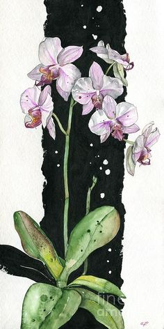 Flower ORCHID 02 Elena Yakubovich Painting  - Flower ORCHID 02 Elena Yakubovich Fine Art Print