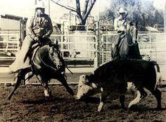 Roc O Lena ~ Authentic Quarter Horses ~
