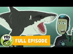 """Martin and Chris are on a mission to see something that no one has ever seen before - the birth of a baby great white shark. They use a Remora Rocketsub to """". Wild Kratts Full Episodes, Baby Great White Shark, Beach Fun Kids, Pbs Kids Videos, Outside Games For Kids, Shark Activities, Thanksgiving Activities For Kids, Matter Science, Presents For Kids"""