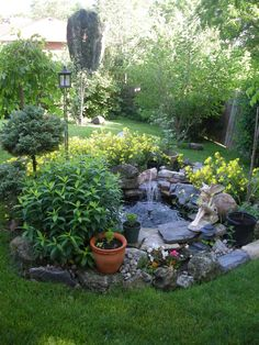 Small water garden......but notice the greenery around it....not ugly trees, simple and clean and you know its a pond