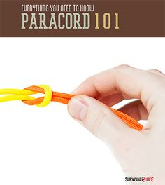 Why is paracord so popular in the survivor world? We have listed all the reasons you NEED this in you bug out bag!