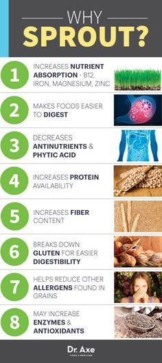 Sprout Guide How to Sprout Grains, Nuts and Beans is part of Sprouted grains - The benefits of sprouting can include digestive support, better nutrient absorption and improved metabolism Learn how to sprout grains Sprouting Seeds, Sprouting Grains, Coconut Health Benefits, Natural Antibiotics, Korn, The Best, Food To Make, Health Tips, Gut Health