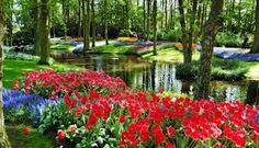 Resultado de imagen para parques y jardines de paises