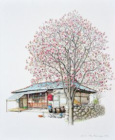 (Korea) A small store, a disappearing mini shop in a rural, 2014 by Lee Me Kyeoung ). ink on paper with a pen use the acrylic. Watercolor Art, Colorful Art, Asian Art, Pastel Art, Korean Art, Beautiful Drawings, City Art, Scenic Art, Building Art