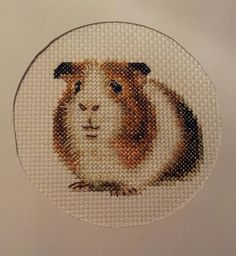 Guinea pig cross stitch. So cute!