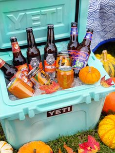 Best Fall Pumpkin Beers and Ciders. - DomestikatedLife